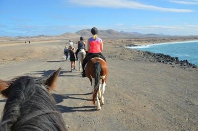 promenade-cheval-fuerteventura (39)