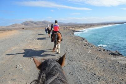 promenade-cheval-fuerteventura (48)