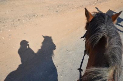 promenade-cheval-fuerteventura (54)