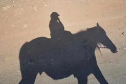 promenade-cheval-fuerteventura (57)