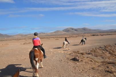 promenade-cheval-fuerteventura (61)