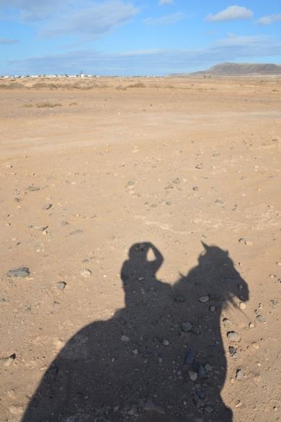 promenade-cheval-fuerteventura (64)