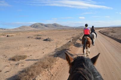 promenade-cheval-fuerteventura (68)