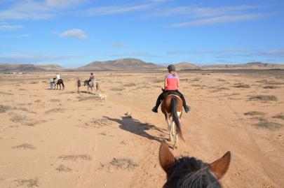 promenade-cheval-fuerteventura (69)