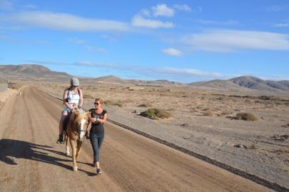 promenade-cheval-fuerteventura (73)