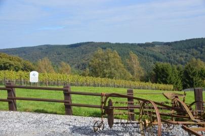 rochehaut-sur-semois (24)