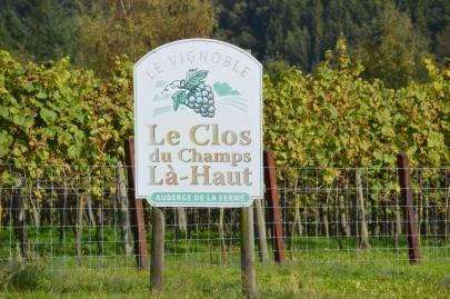 rochehaut-sur-semois (25)