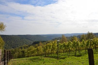 rochehaut-sur-semois (30)