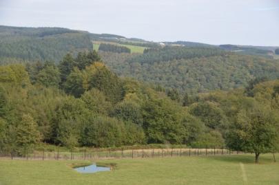 rochehaut-sur-semois (63)