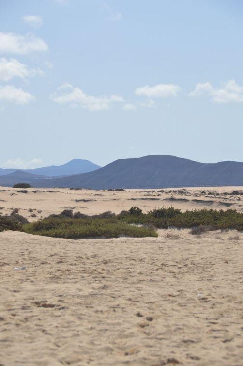 dunes-corralejo-fuerteventura (54)