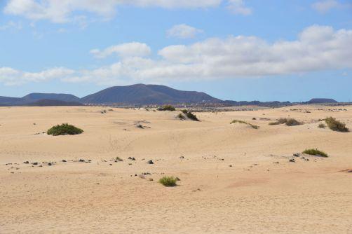 dunes-corralejo-fuerteventura (94)