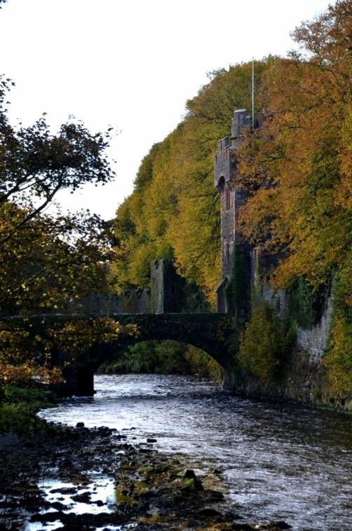 roadtrip-causeway-irlande (34)