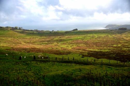 roadtrip-causeway-irlande (5)