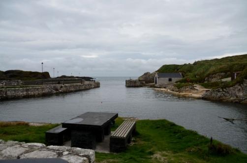 roadtrip-causeway-irlande (85)