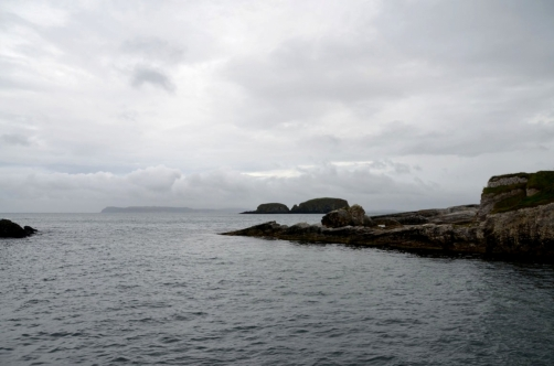 roadtrip-causeway-irlande (95)