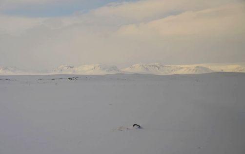 islande-hiver (14)