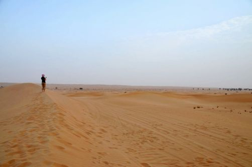 desert-de-dubai (12)