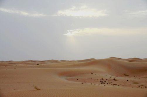 desert-de-dubai (20)