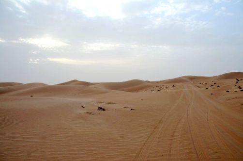 desert-de-dubai (21)