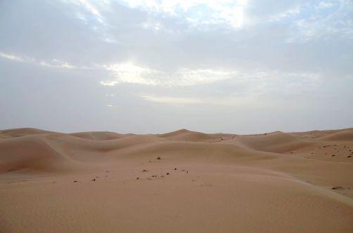 desert-de-dubai (22)