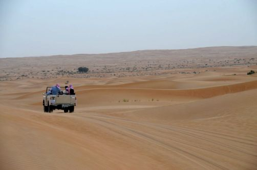 desert-de-dubai (9)