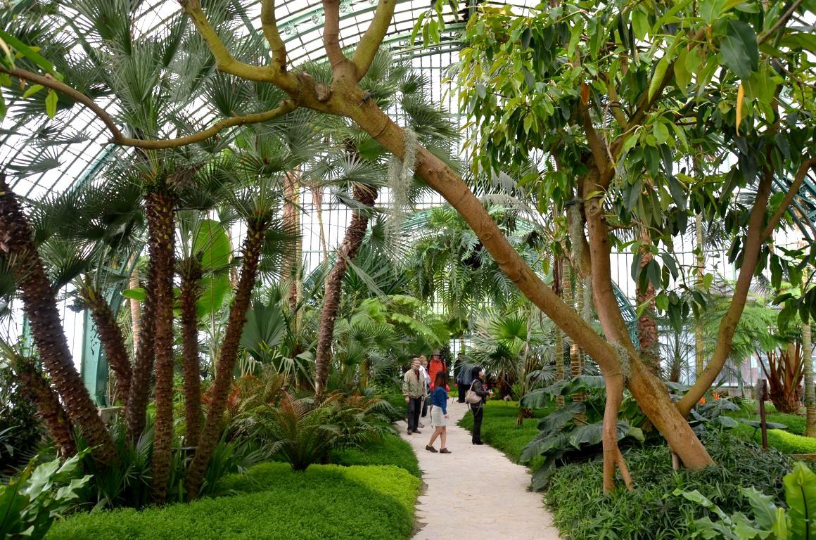Visite des serres royales de laeken bruxelles for Serres de jardin belgique