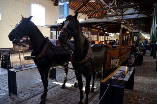 tram-experience-norvege (9)