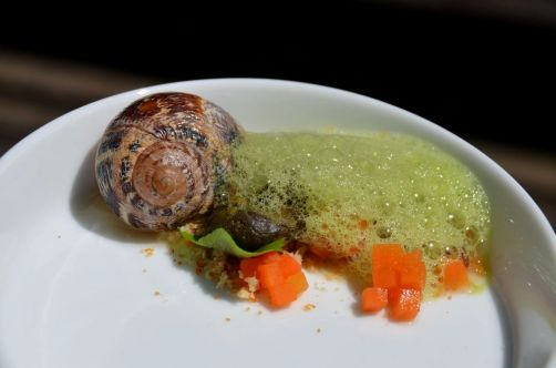 Petit gris de Namur, égopode, pickles - Carl Gillain