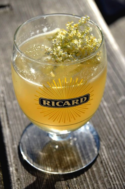 ricard (7)