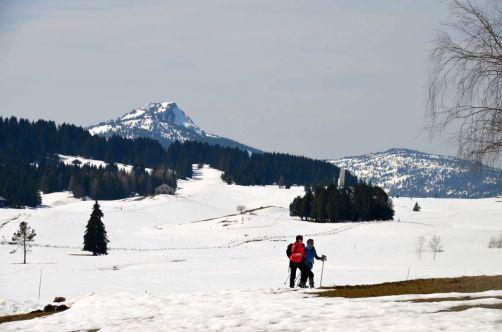ayze-plateau-des-glières (24)