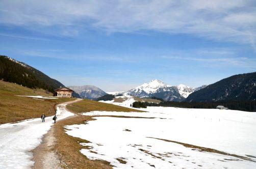 ayze-plateau-des-glières (44)