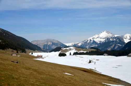 ayze-plateau-des-glières (48)