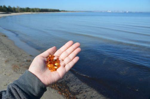 """La région de Gdansk est connue pour son ambre, """"l'or de la Baltique"""". A récolter sur les plages... avec un peu de chance !"""