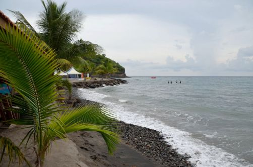 martinique (456)