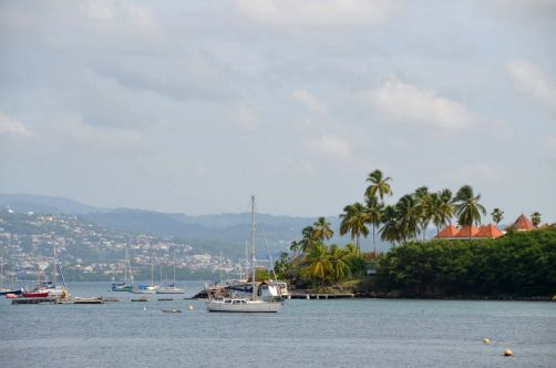 martinique (801)