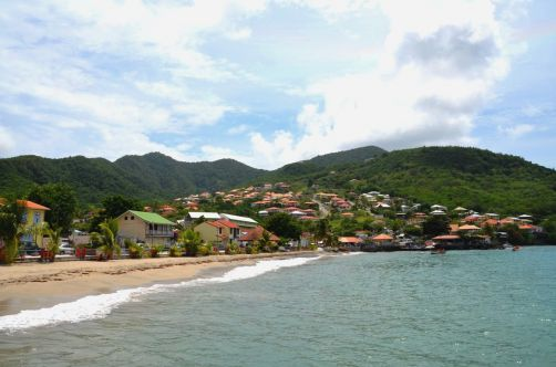 martinique (903)