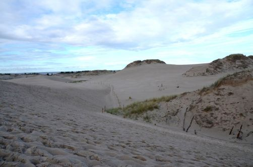 dunes-pologne (20)