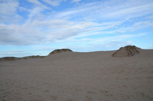 dunes-pologne (28)