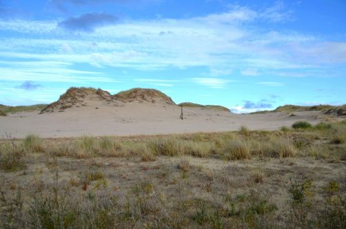 dunes-pologne (41)
