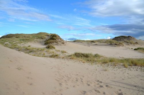 dunes-pologne (44)