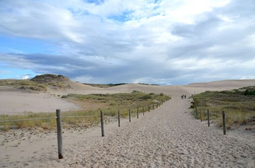 dunes-pologne (45)