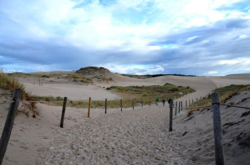 dunes-pologne (52)