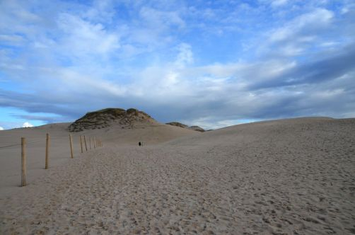 dunes-pologne (53)