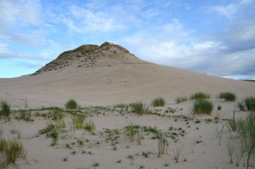 dunes-pologne (58)