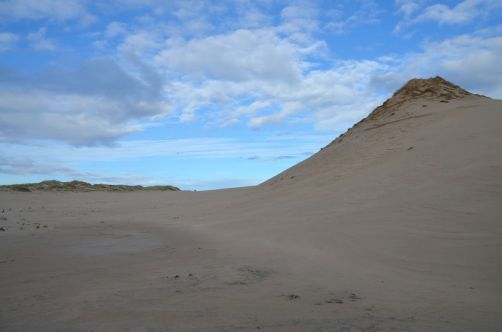 dunes-pologne (59)