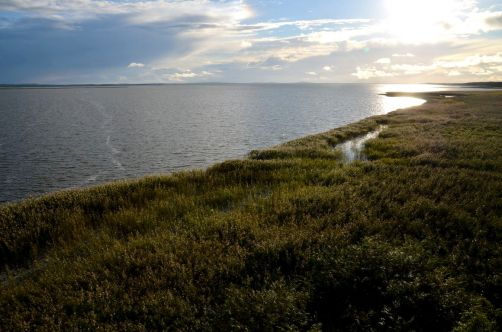 dunes-pologne (65)