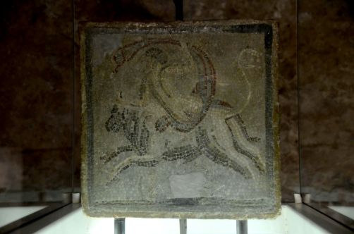 ile-de-sainte-margherite (105)