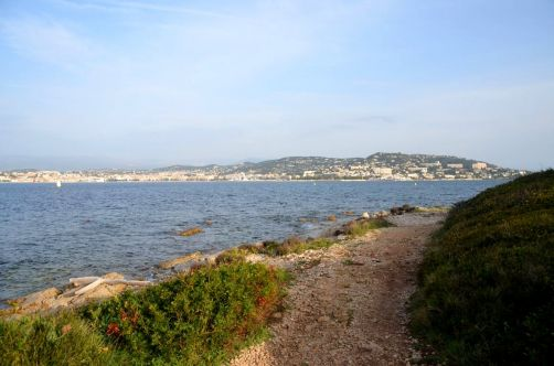 ile-de-sainte-margherite (39)