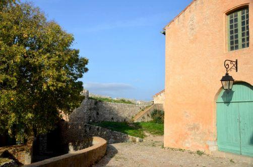 ile-de-sainte-margherite (83)