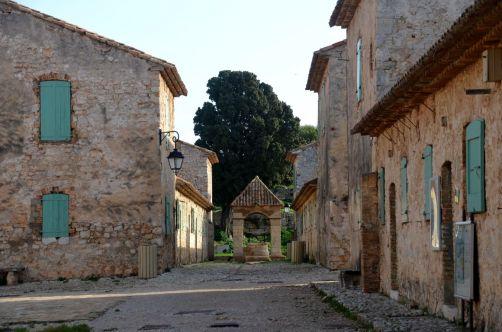 ile-de-sainte-margherite (84)